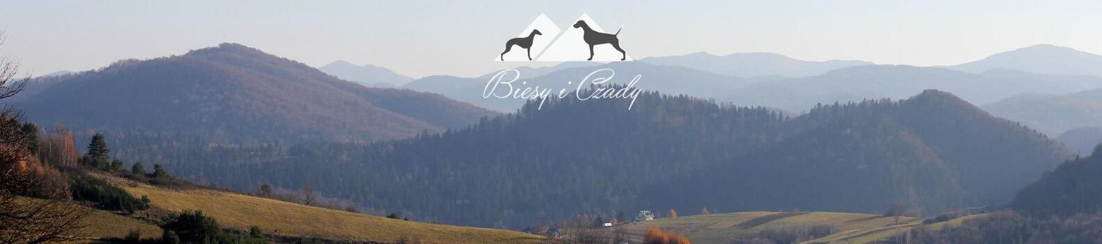 Biesy i Czady from passion with love